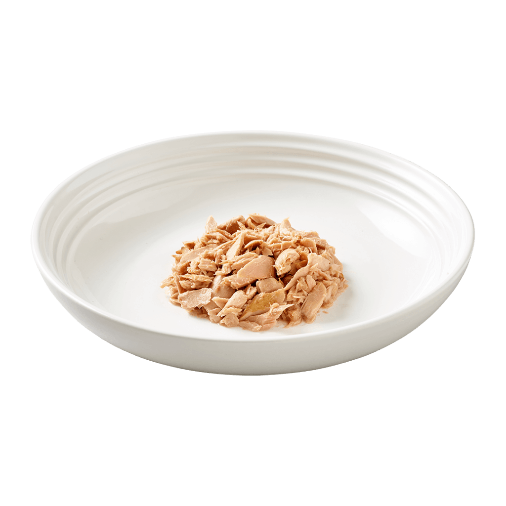 Isolated image of Reveal tuna cat food on plate
