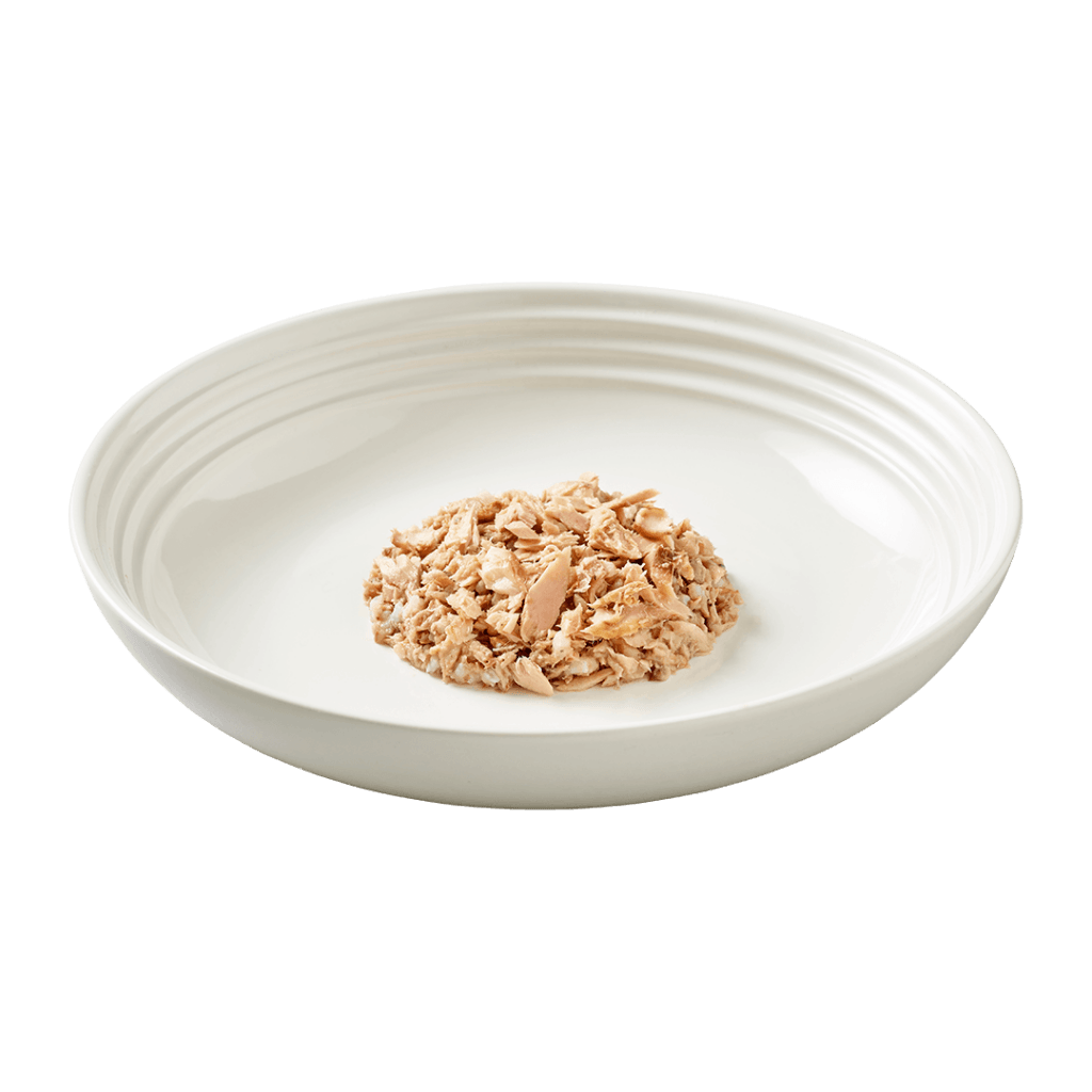 Isolated close up image of Reveal ocean fish cat food on a plate